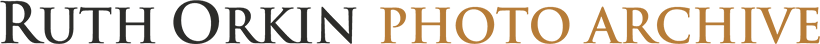 http://orkin-logo-retina